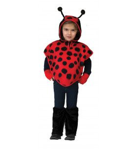 Buggy Lieveheersbeest Pak Kind