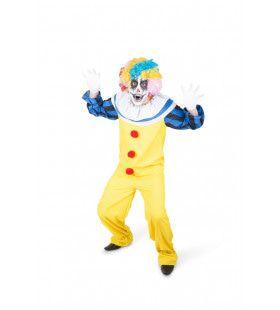 Rare Enge Clown Kippenvel Circus Kostuum