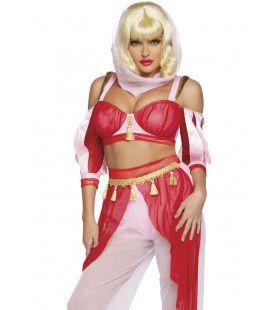 Droom Van Een Harem Buikdanseres Vrouw Kostuum