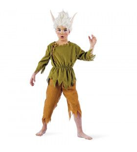 Puntoor Elf Midden-Aarde Kind Kostuum