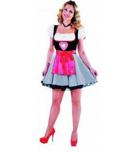 Alpen Droom Dirndl Bierfeest Vrouw Kostuum