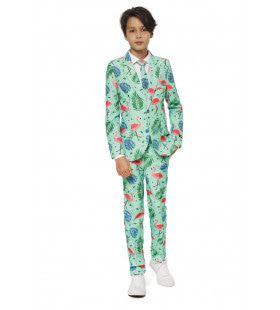 Boys Tropical Flamingo All The Way Jongen Kostuum