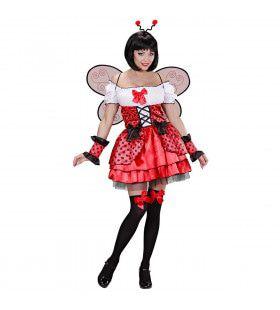 Schattig Lieveheersbeestje Vrouw Kostuum