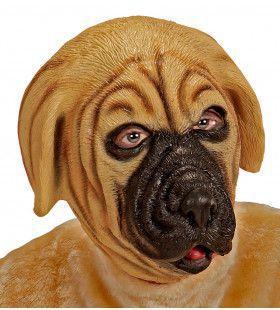 Cartoony Masker, Bulldog