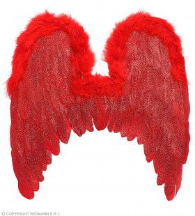 Rode Veren Vleugels Met Glitters 46 X 49 Centimeter