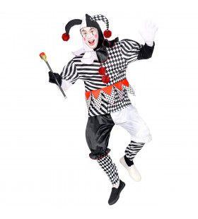 Paljas Van Het Hof Harlekijn Man Kostuum